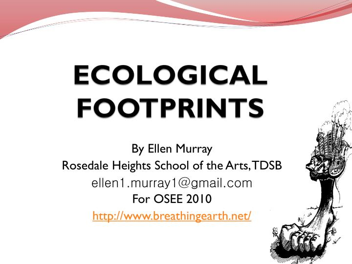 ecological footprints n.