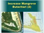 increase mangrove butaritari 2