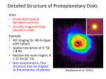 detailed structure of protoplanetary disks