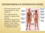 interdependence of reproductive system