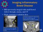 imaging inflammatory bowel disease