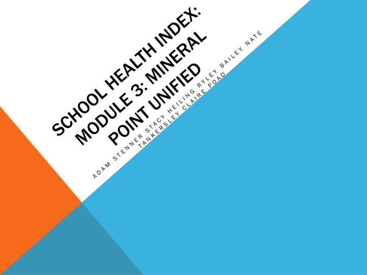school health index module 3 mineral point unified n.