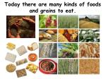 today there are many kinds of foods and grains to eat