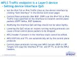 mpls traffic endpoint is a layer3 device setting device interface qos