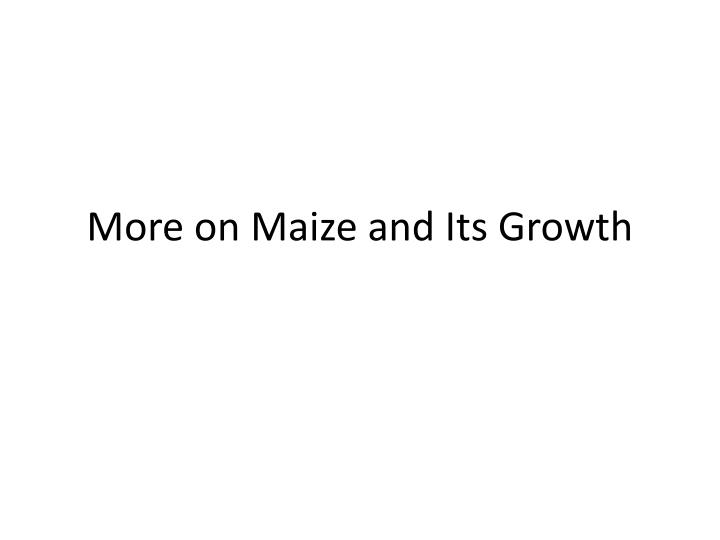 more on maize and its growth n.