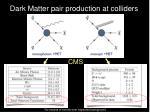dark matter pair production at colliders1