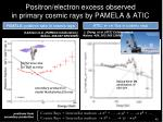 positron electron excess observed in primary cosmic rays by pamela atic
