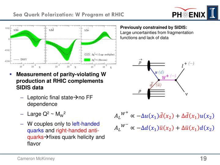 Sea Quark Polarization: W Program at RHIC