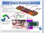 iter torus pumping system