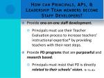 how can principals aps leadership team members become staff developers3