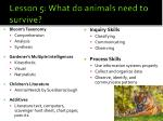 lesson 5 what do animals need to survive