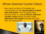 african american counter culture