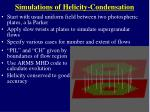 simulations of helicity condensation