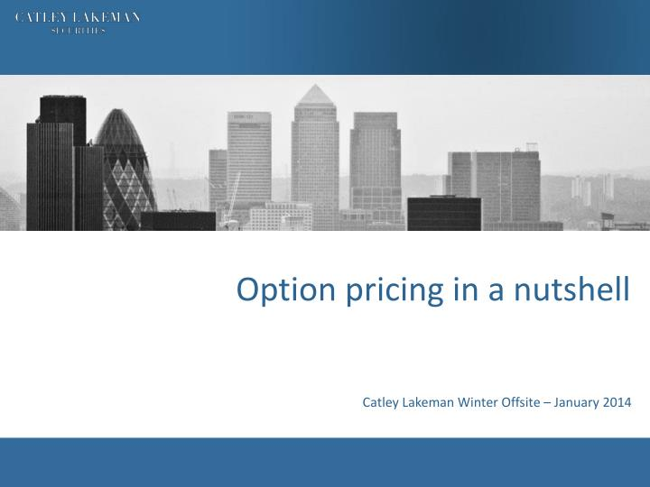 option pricing in a nutshell n.