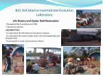 bio 354 marine invertebrate evolution laboratory3