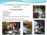 bio 354 marine invertebrate evolution laboratory4