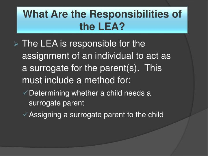 What Are the Responsibilities of the LEA?