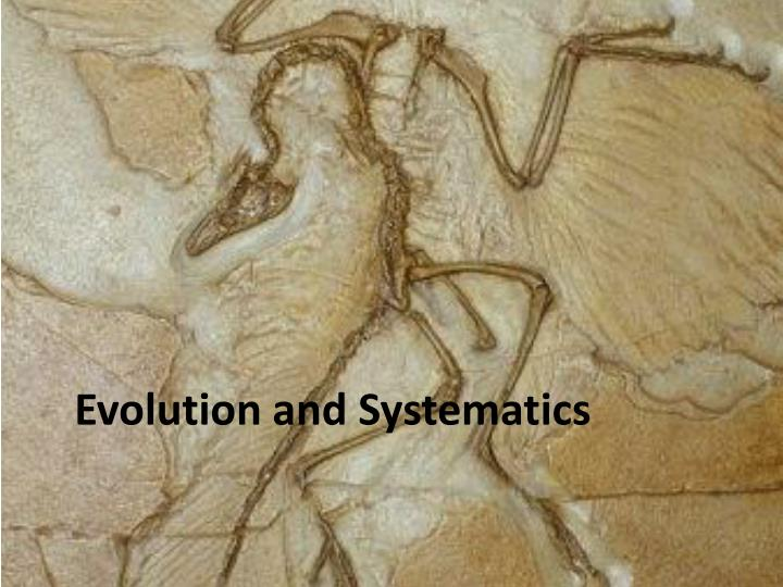 evolution and systematics n.