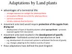 adaptations by land plants