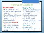 fibrous or globular