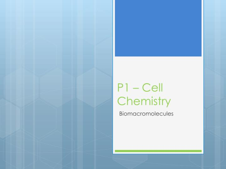 p1 cell chemistry n.