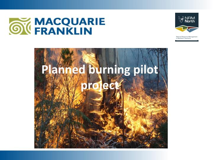 planned burning pilot project n.