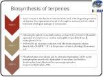 biosynthesis of terpenes