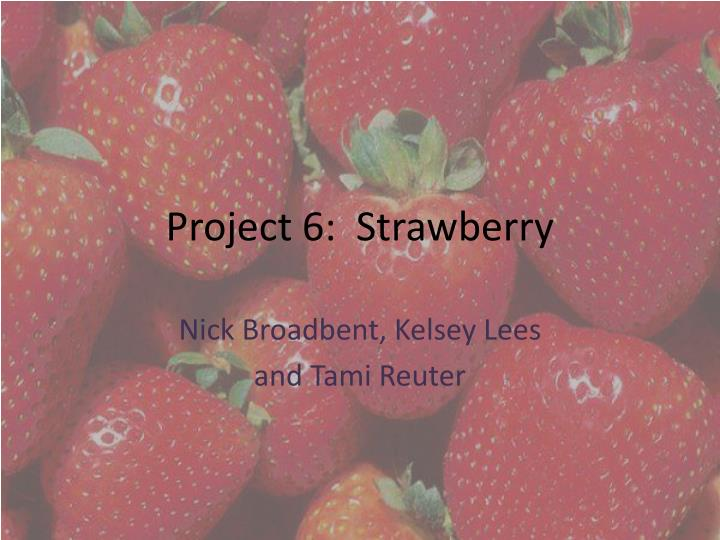 project 6 strawberry n.