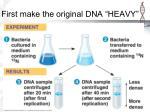 first make the original dna heavy