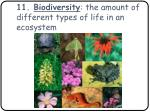 11 biodiversity the amount of different types of life in an ecosystem