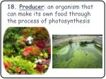 18 producer an organism that can make its own food through the process of photosynthesis