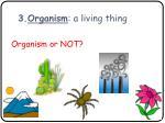 3 organism a living thing