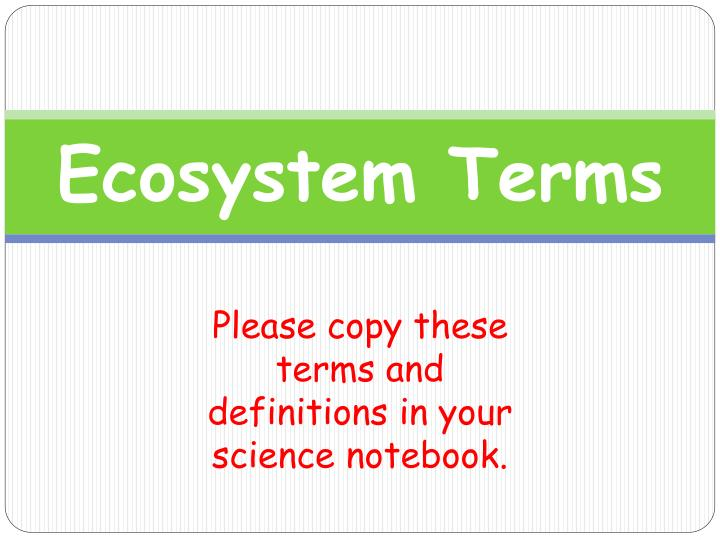 ecosystem terms n.