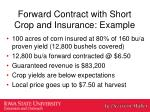 forward contract with short crop and insurance example