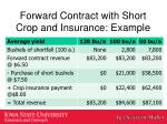 forward contract with short crop and insurance example1