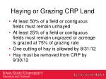 haying or grazing crp land1