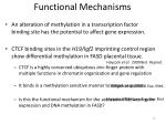 functional mechanisms