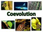 coevolution
