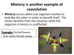 mimicry is another example of coevolution