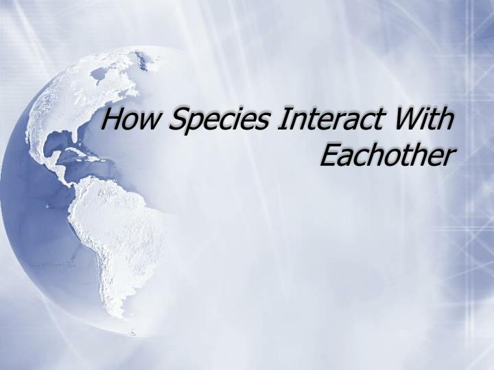 how species interact with eachother n.