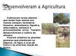 desenvolveram a agricultura