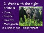2 work with the right animals