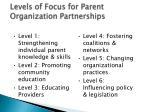 levels of focus for parent organization partnerships