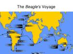 the beagle s voyage