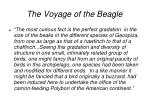 the voyage of the beagle1