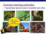 common warning coloration