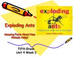 exploding ants amazing facts about how animals adapt