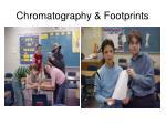 chromatography footprints