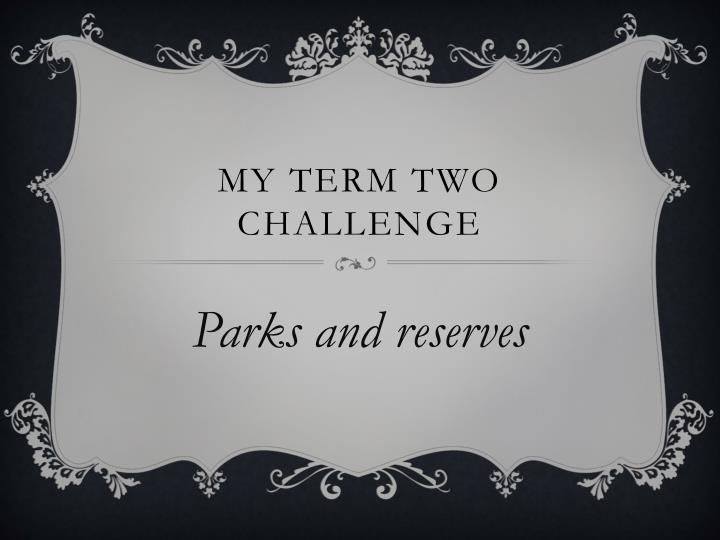 My term two challenge