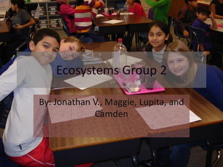 ecosystems group 2 n.